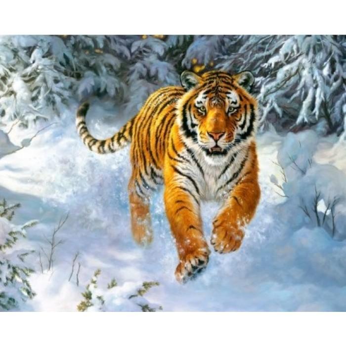 Алмазная вышивка бенгальские тигры 88